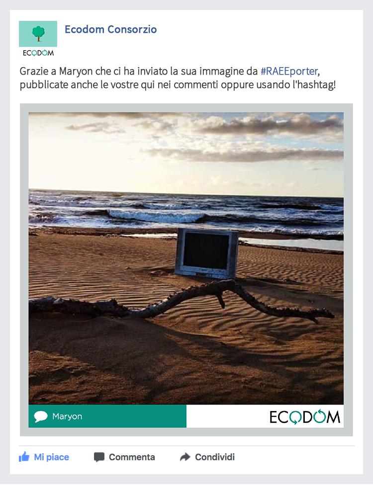 Social Media Strategy - Ecodom